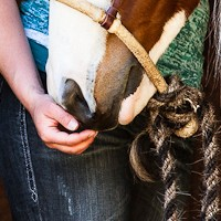 moi_equinephotography-17.jpg